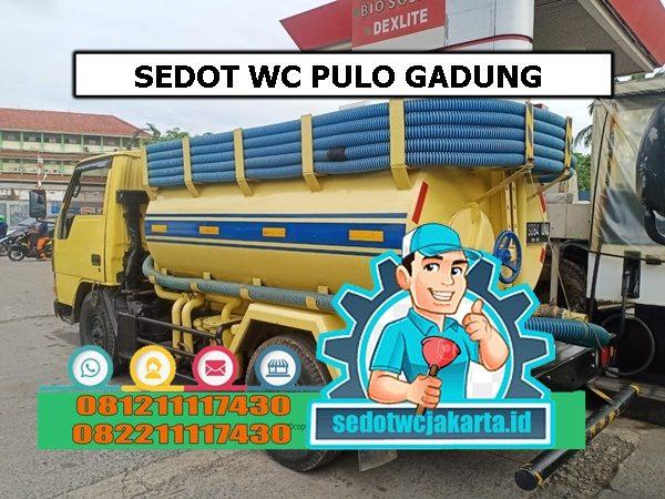 SEDOT WC PULO GADUNG